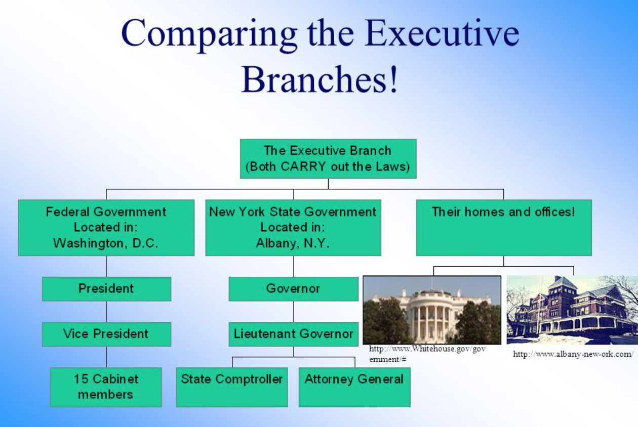COMPARING THE EXECUTIVE BRANCHES